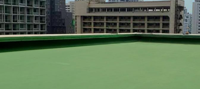 Green Roof _2